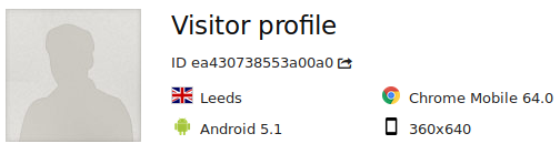 visitor_profile_single_visit_summary
